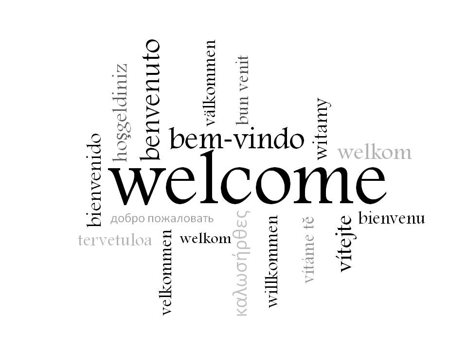 Welcome Carol S Adventures In Translation